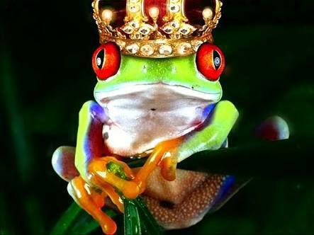 O Arquétipo do Príncipe Desencantado - 23/Jun - 15h